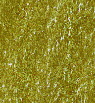 GROOVE Jumbo gold